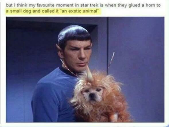 Star Trek was on thecheap