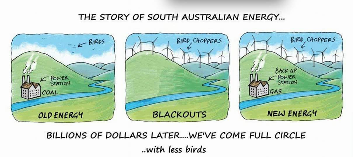 South Australian power crisis in a nut shell
