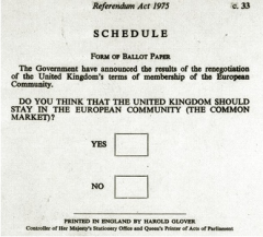 referendum-picture