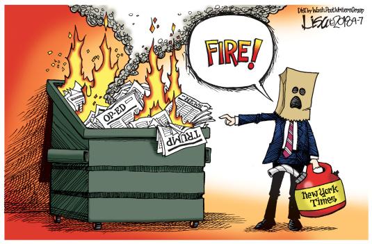 Lisa Benson cartoon