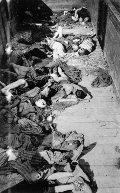 Dead_corpses_in_train_dachau